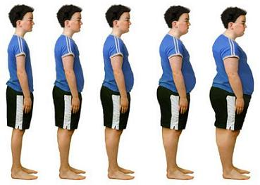 Normal, fat, overweight and obese weight stages.