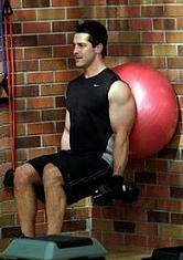 exercise ball squat with biceps curls